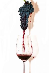 Виноград в Саратове