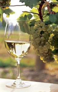 виноделие в Саратове и Саратовской области