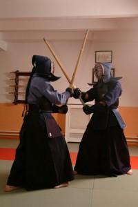 kendo-got